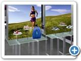 display6-shoe.bag